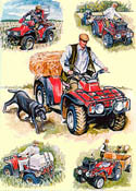 SIMON AND THE QUAD BIKES